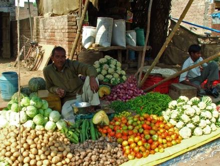 Chambal mandi